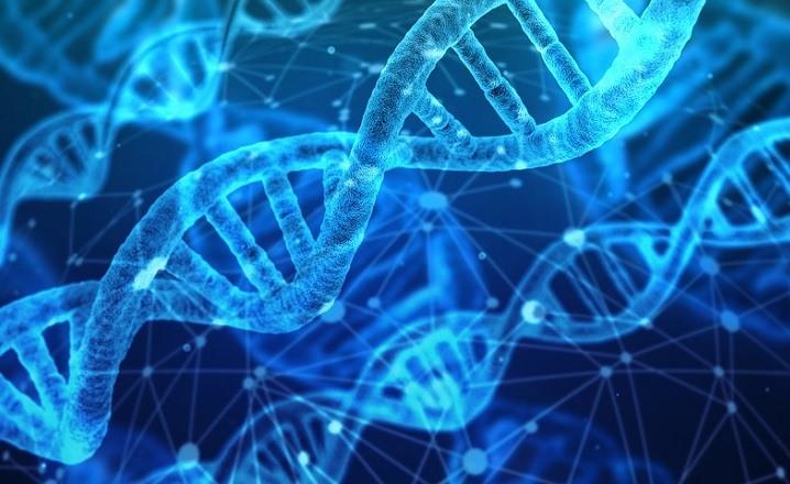 Edicion ADN