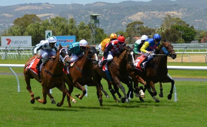 Apuestas carreras de caballos