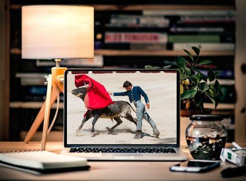 Como ver las corridas taurinas