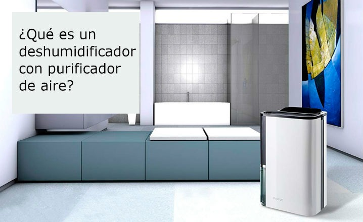 Deshumidificador con purificador de aire