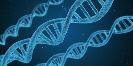 Test genético ADN